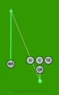 RN - Singleback01 - WR (2) is a 5 on 5 flag football play